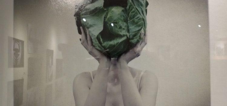 """Finisage der Ausstellung """" Die Unausweichlichkeit des Augenblicks"""" von Gabriella Falana und Renata Pažusinska am 18.01.2018 ab 18 Uhr bei Box66"""